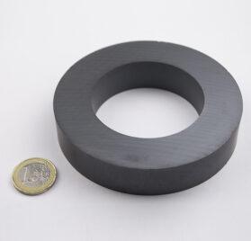 Magnitech magnites ferro-f100x20x60